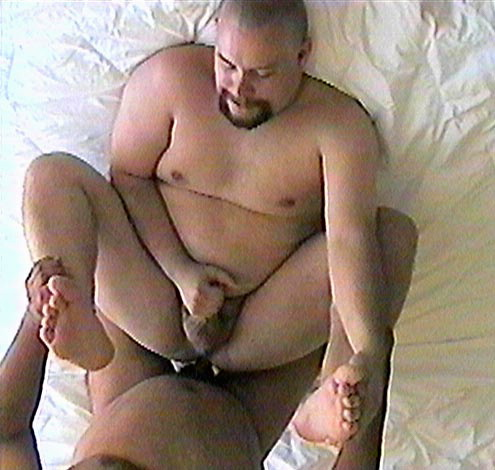 osos peludos gordas mamando